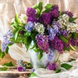 Stock Photo: Still life sprigs lilac thriving