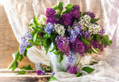 Still life sprigs lilac thriving — Stock Photo
