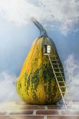 Fairytale pumpkin house ladder window — Stock Photo