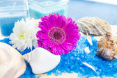 Spa set bath salt flowers — Stock Photo