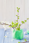 Spring blooming twigs wooden table — Stock Photo