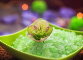Spa concept closeup green bathing salt — Stock Photo