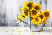 Natura morta bouquet girasoli annaffiatoio — Foto Stock