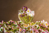 Still life bouquet daisies wooden table — Стоковое фото