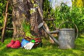 Tools equipment job spring garden — Stock Photo