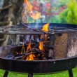 Lighting fire during spring barbecue garden — Stock Photo #46400947