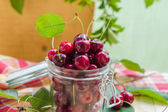 Preparation products processed fresh colorful summer fruits jars — Stock Photo