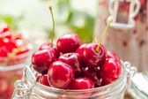 Summer fruits closeup cherries jar processed — Stockfoto