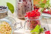 Red white currants gooseberries jars preparations — Stock Photo