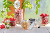 White black red currants gooseberries cherries jars preparations — Stock Photo