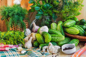 Preparing pickling cucumbers various components — Stock Photo