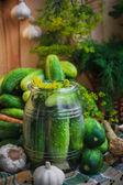 Jar pickles other ingredients pickling — Stock Photo