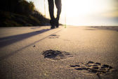 Nordic walking sport run walk motion blur outdoor person legs st — Stock Photo