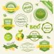 Vector Organic Food, Eco, Bio Labels and Elements — Stock vektor