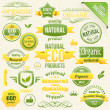 Vector Organic Food, Eco, Bio Labels and Elements — Stockvektor