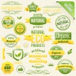 Vector Organic Food, Eco, Bio Labels and Elements — Imagen vectorial