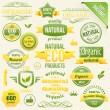 Vector Organic Food, Eco, Bio Labels and Elements — Stock Vector