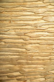 Golden sockelputz — Stockfoto