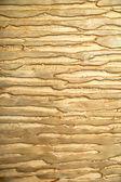 Dekorativní omítky zlatý — Stock fotografie
