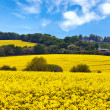 English countryside landscape - Stock Photo