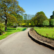 Park alley in spring,Yorkshire, uk — Stock Photo