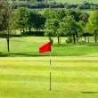 Stock Photo: Golf course,uk