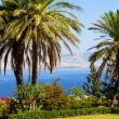 Sea of Galilee, Mount of Beatitudes, gardens — Stock Photo