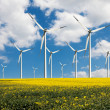 Eco power wind turbines  — Stock Photo