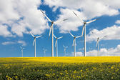 Eco power wind turbines — Stock Photo