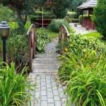 trädgård — Stockfoto