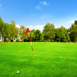 Landscape of a beautiful green golf course — Stock Photo #32386943