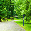 Park in Spring — Stock Photo