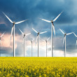 Wind turbines farm — Stock Photo