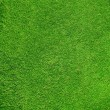 Beautiful green grass texture from golf course  — Stok fotoğraf