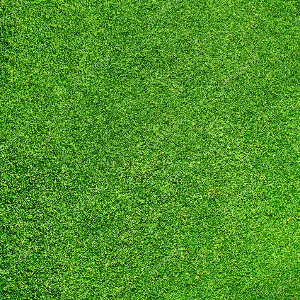 Beautiful green grass texture from golf course — Stock ...
