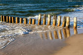 Wooden breakwater — Stock Photo