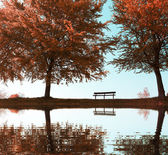 Bench and trees in city park in the autumn — Stock Photo