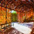 Deep red plant tunnel with autumn leafs — Stock Photo