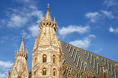 Cathedral in Vienna Austria — Stock Photo