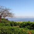 Seof Galilee — Stock Photo #15439443