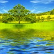 Beautiful lake and green meadow by springtime — Stock Photo