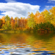 Fantastic autumn landscape — Stock Photo
