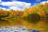 Fantastisch herfst landschap — Stockfoto