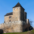 Medieval castle Bedzin in Poland - Stock Photo