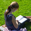 Student reading books at the school park - 