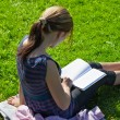 Student reading books at the school park - Stock Photo