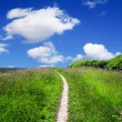 Stock Photo: Mountain path