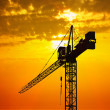 Crane at sunset — Stock Photo