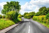 Curvy road — Stock Photo