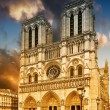 Cathedral Notre Dame de Paris — Stock Photo #23297014